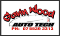 Gavin Wood Autotech